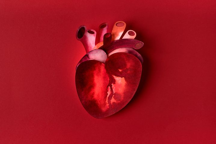 Herztransplantierter über Corona-Gefahr: »Ich kann nur hoffen, dass alle um mich geimpft sind«