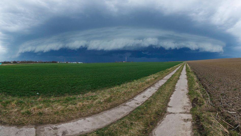 Landschaft im Süden Sachsen Anhalts (im April 2018)