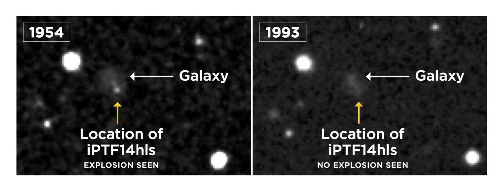 EINMALIGE VERWENDUNG Supernova / Zombie-Stern