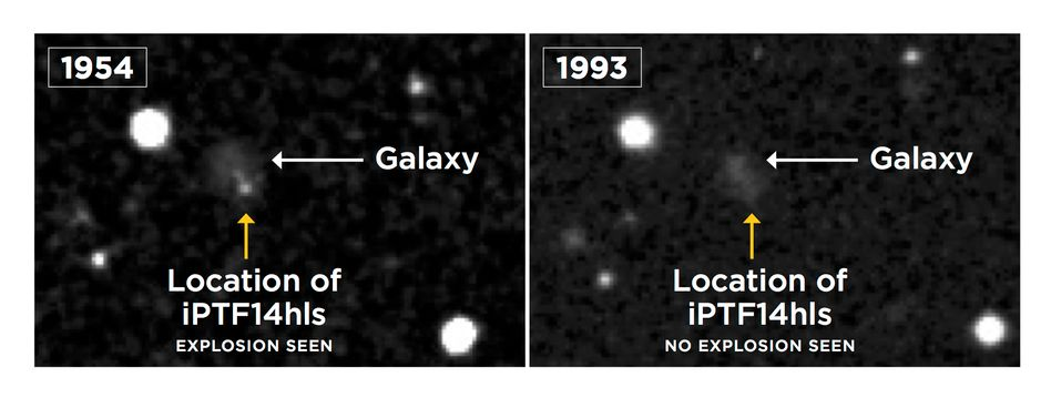 Sternexplosion 1954 (links), kein Leuchten mehr 1993 (rechts). 2014 leuchtete es an gleicher Stelle wieder.