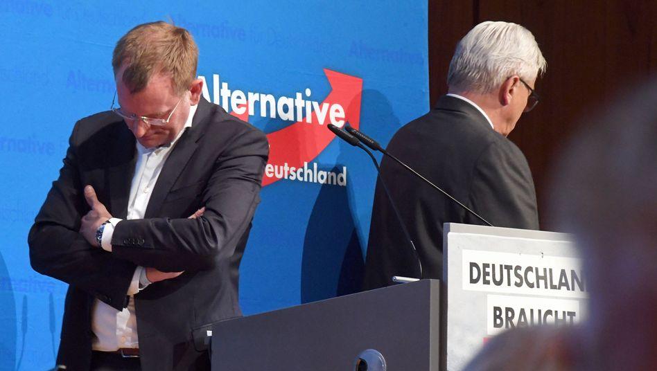 "AfD-Landeschefs Spaniel, Gögel: ""Die eigenen Kollegen endgültig beschädigt"""