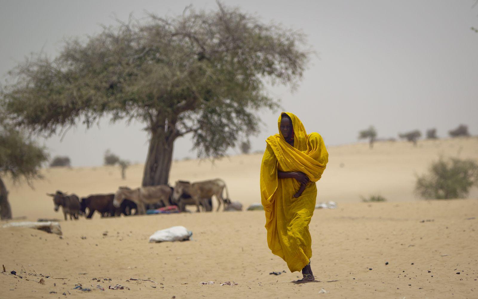 Sahel Zone / Dürre / Klimawandel