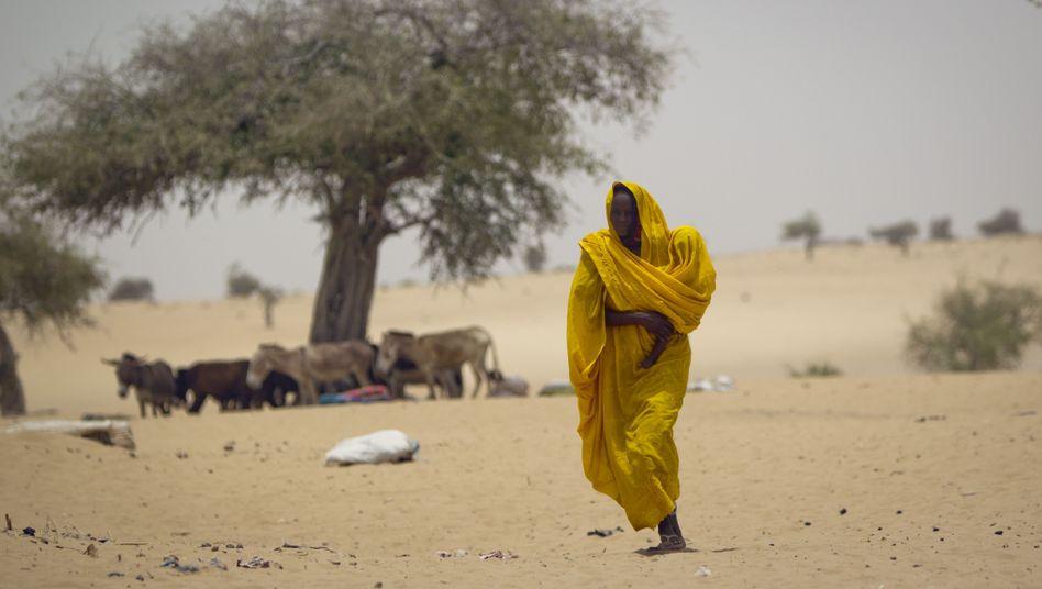 Eine Frau in der Sahelzone im Tschad: Der Klimawandel trifft trockene Länder am härtesten