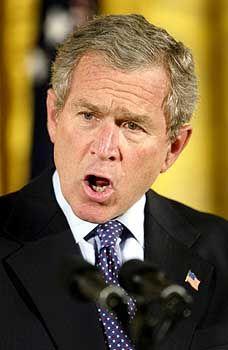 US-Präsident Bush: Harte Linie gegen Syrien
