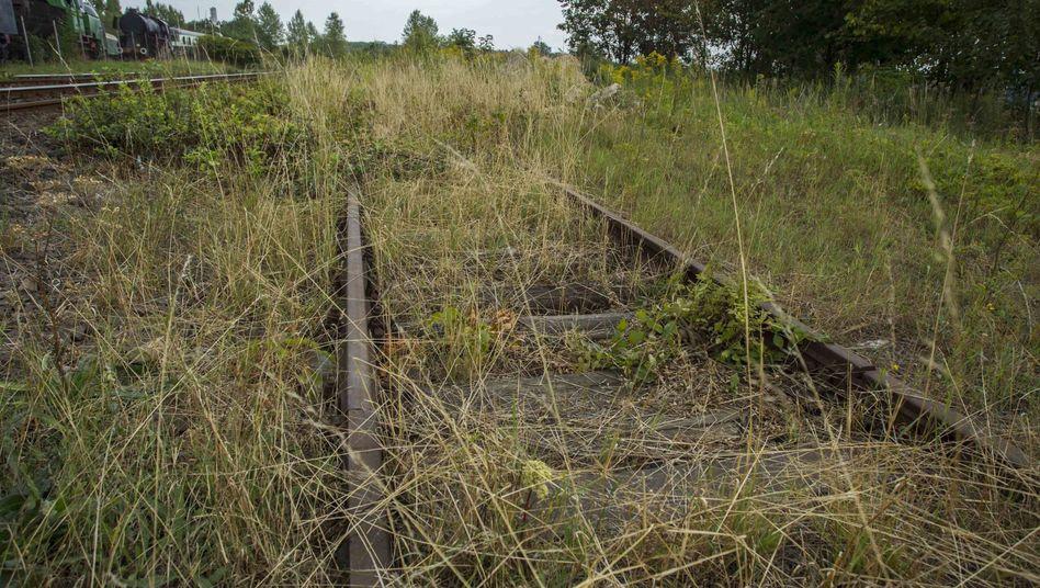 Zugewachsene Schienen bei Walbrzych: Unterirdisches Versteck