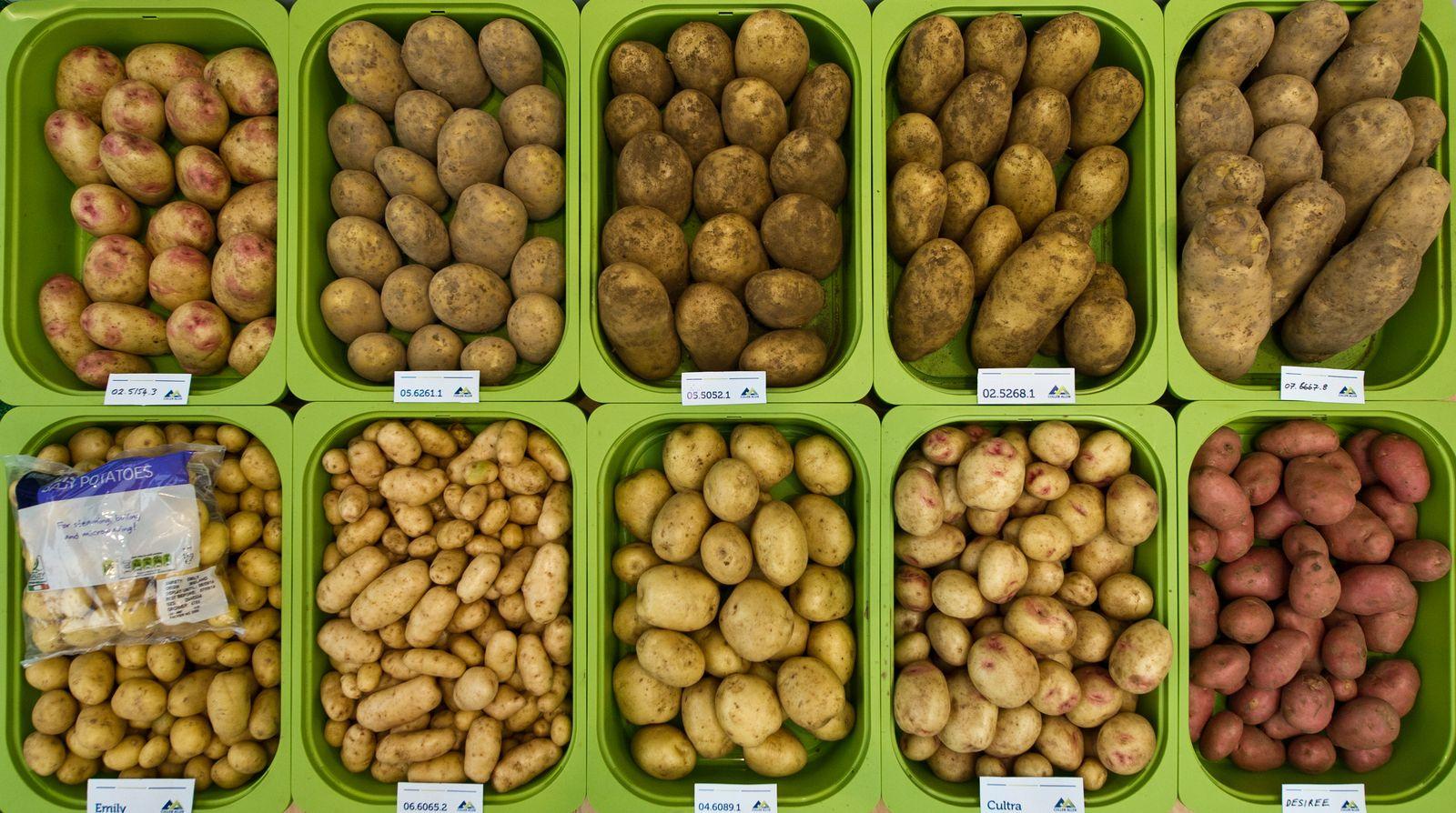 Kartoffeln Plus 45/2018 S. 42 Früher war alles schlechter