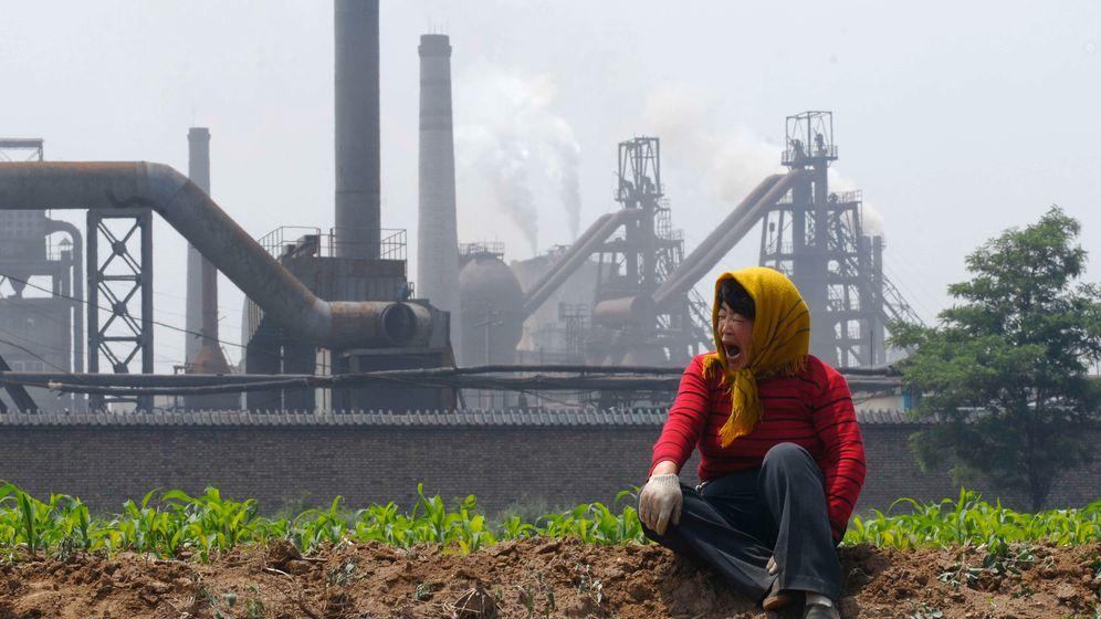 WWF-Studie: Der ausgebeutete Planet