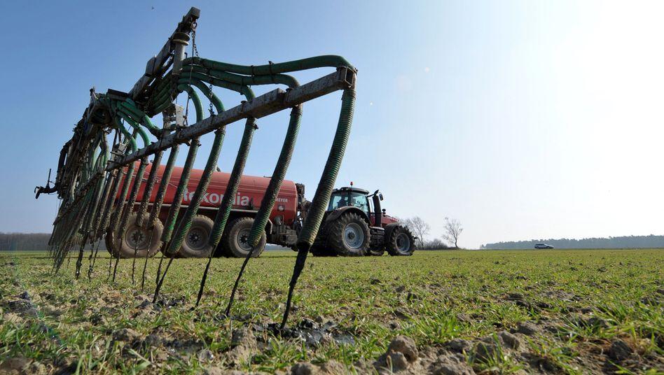 Ein Landwirt in Niedersachsen verteilt Gülle auf einem Feld (Archiv)