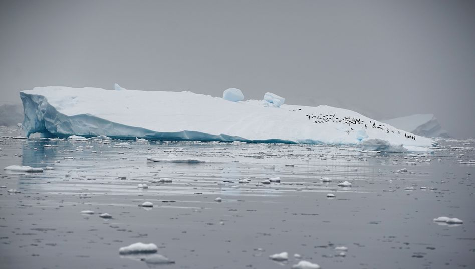 Antarktis: Die Meereisdecke war im Juni rund 8,5 Prozent kleiner als im Durchschnitt der Jahre 1981 bis 2010