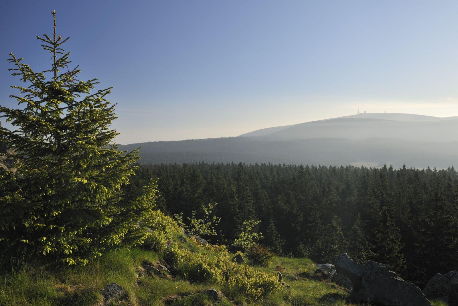 NICHT MEHR VERWENDEN! - Der Brocken / Harz Nationalpark