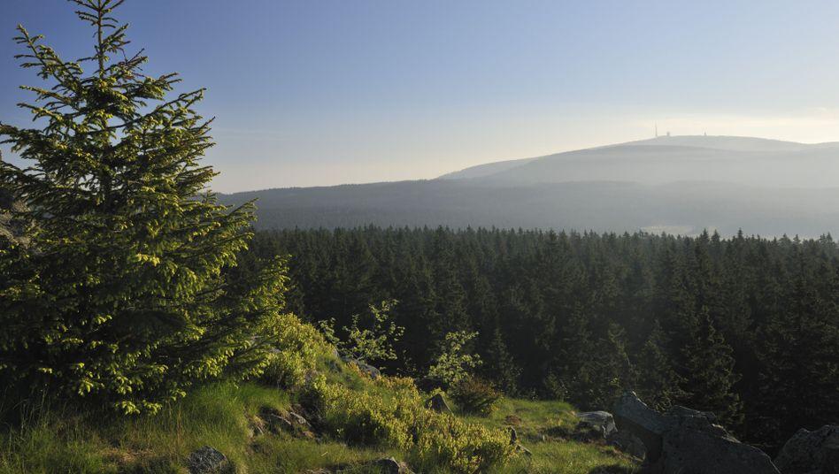 Der Brocken: Höchste Erhebung im Harz mit langer Geschichte