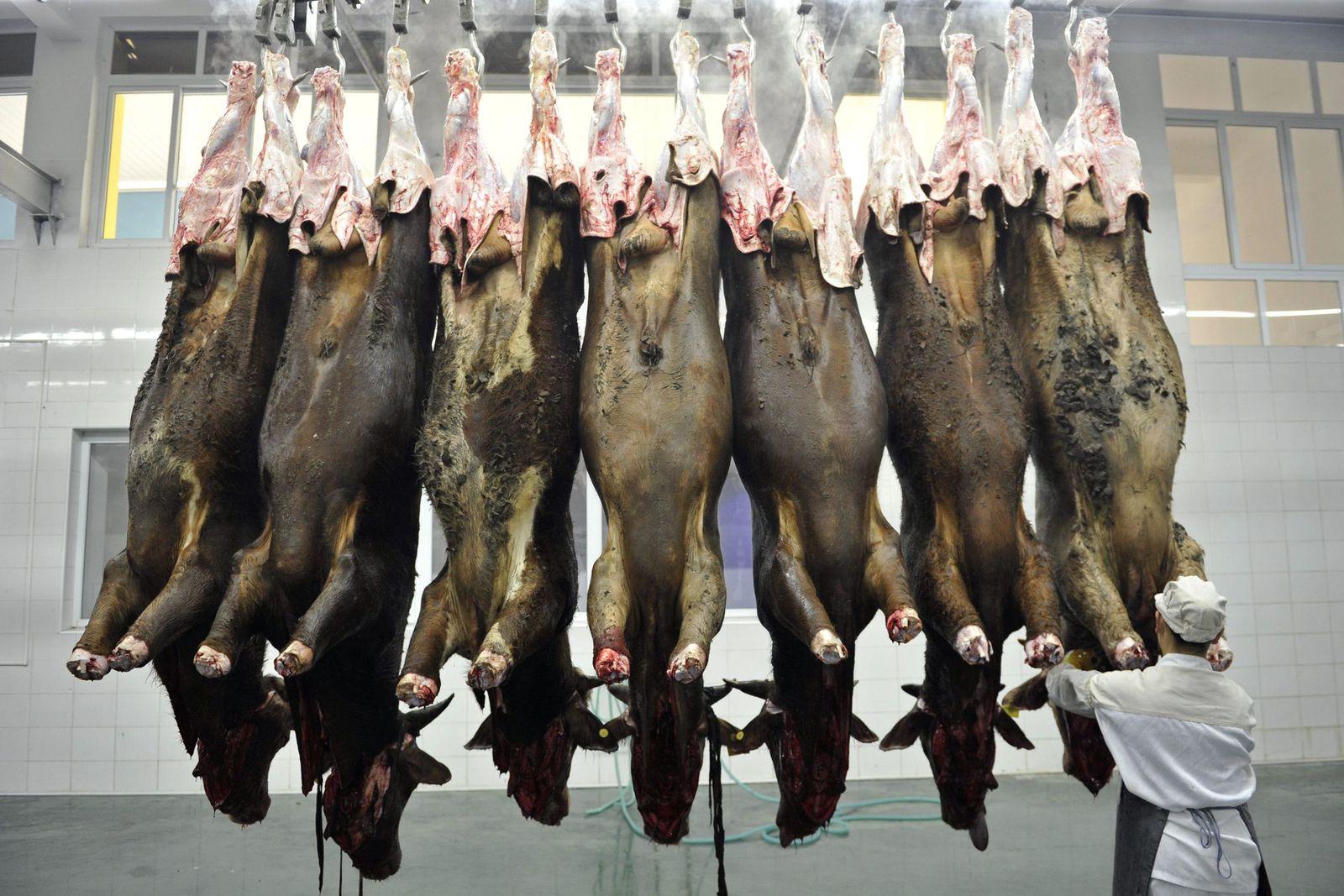 Fleischproduktion / China