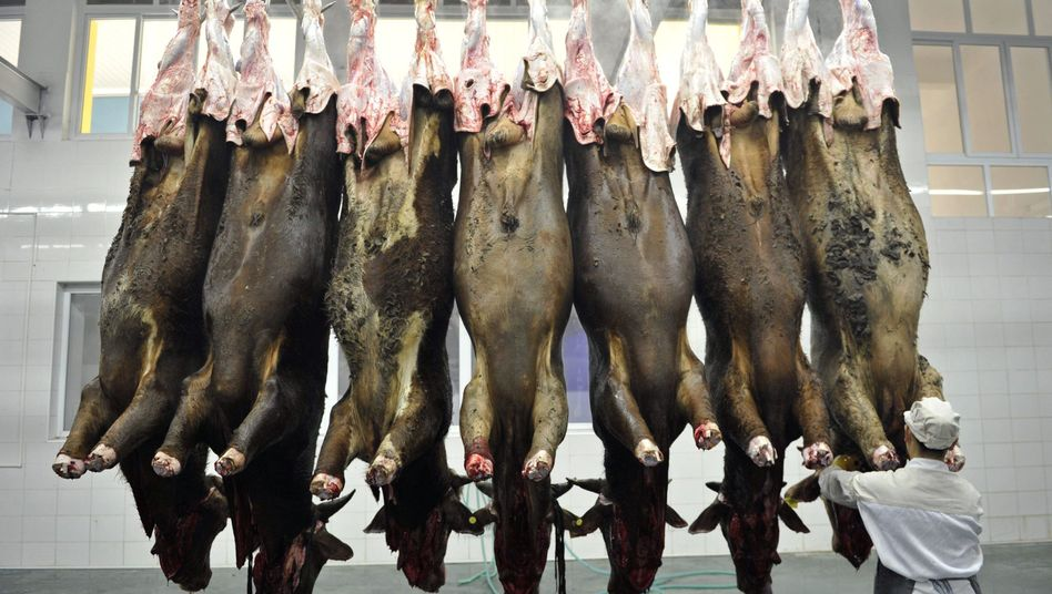 Schlachterei in China: Fleisch wird in Schwellenländern immer beliebter