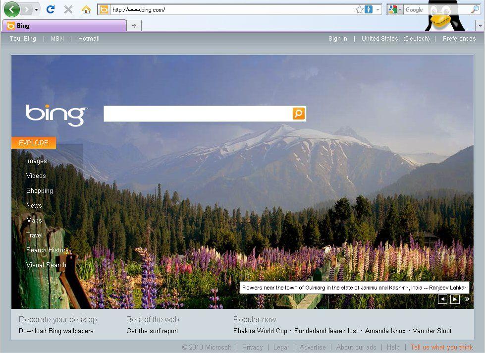 SCREENSHOT Bing
