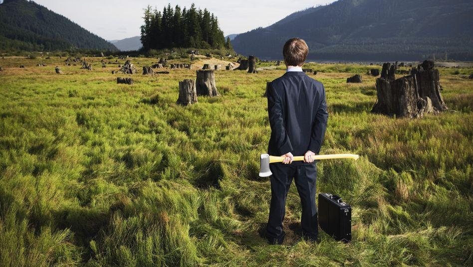 Geschäftsmann mit Axt vor Wiese (Collage): Die einzige Konstante bleibt stets Veränderung
