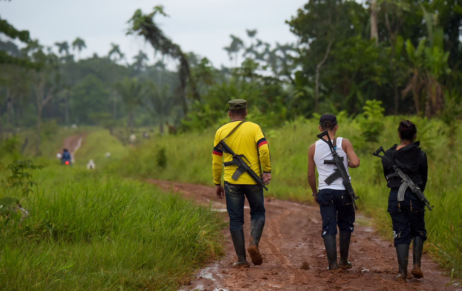COLOMBIA-FARC-DISSIDENT-FIRST FRONT-ALDEMAR
