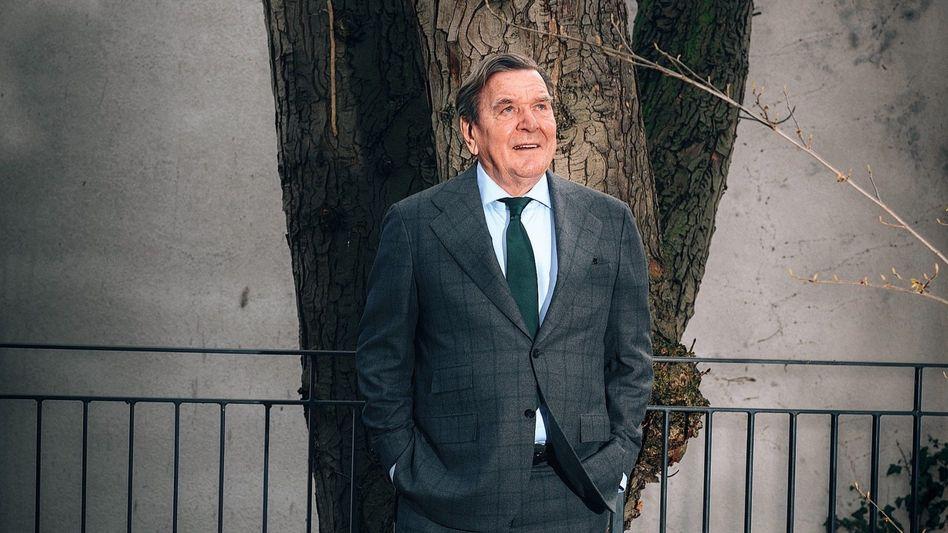"""Altkanzler Gerhard Schröder: """"Wenn man Führung will, dann muss es eine oder einer machen."""""""