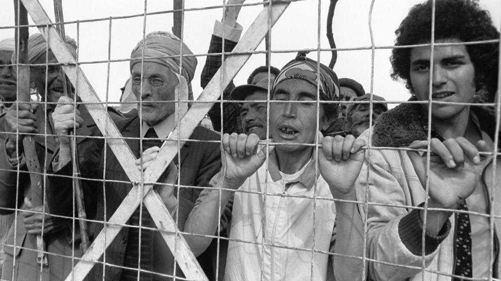 Harkis in Algerien: Frankreichs vergessene Helfer