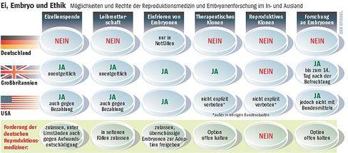 """""""Ei, Embryo und Ethik"""": Andere Länder, andere Sitten"""