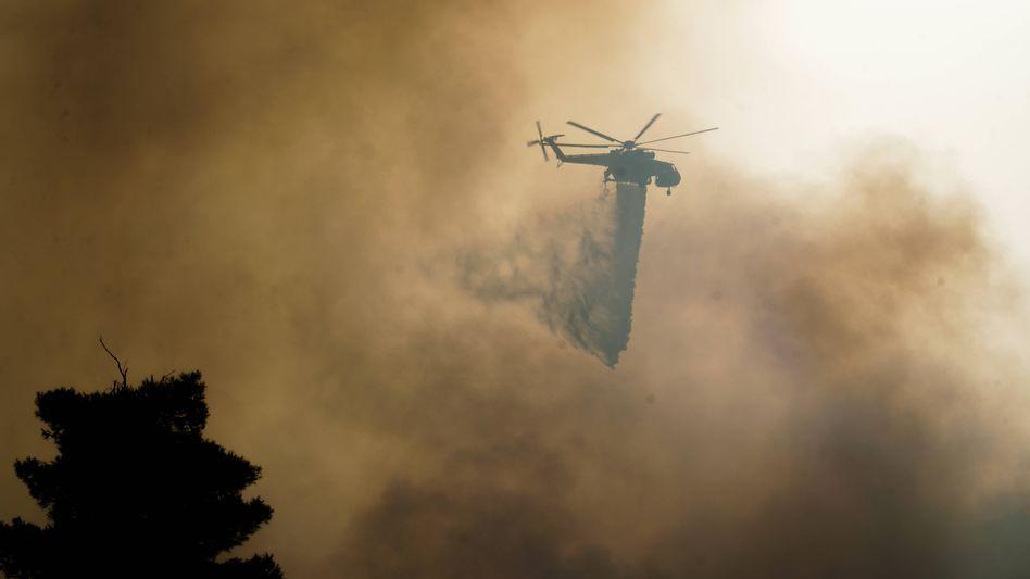 Schon seit Tagen brennt es auf dem Peloponnes, die Löscharbeiten werden durch Winde erschwert