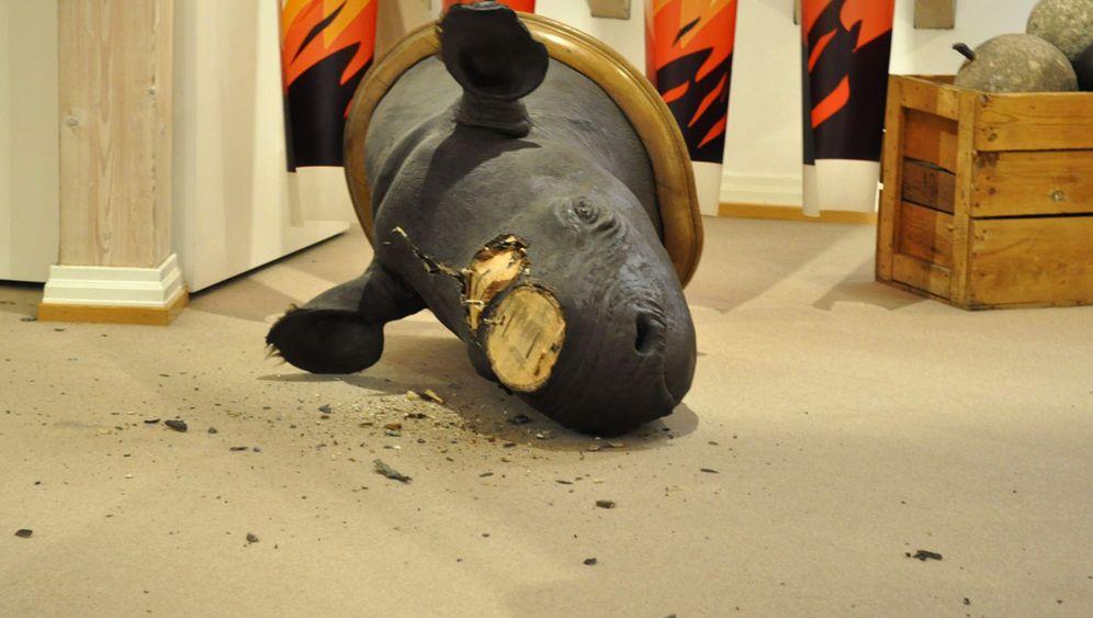 Photo Gallery: Rhinos at Risk