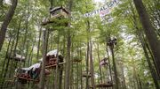 Kampf um den Dannenröder Forst