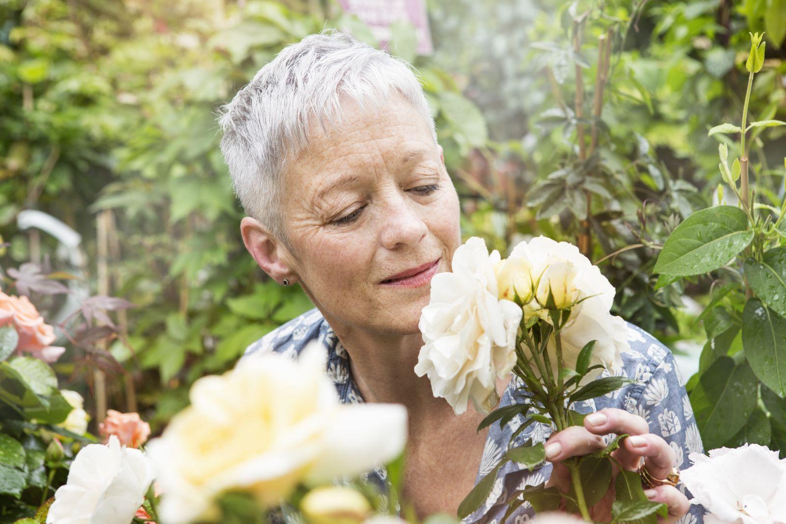 NICHT MEHR VERWENDEN! - Geruch/ Senioren/ Rose
