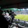Warum Wettbetrug im deutschen Fußball steigen könnte