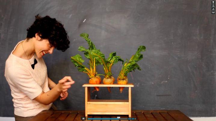 Musik mit Rüben: Berührt man das Gemüse der BeetBox, gibt's was auf die Ohren