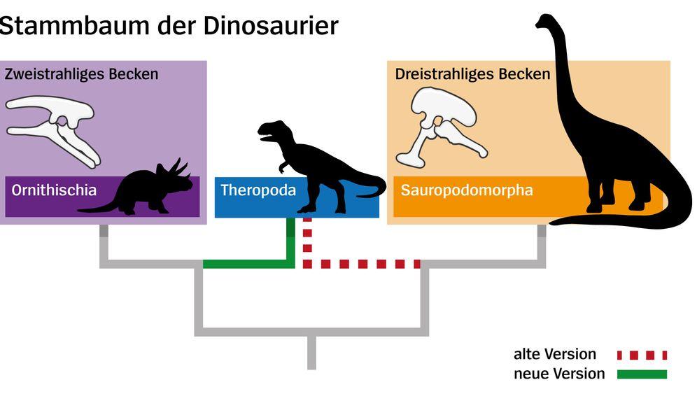 Neuer Stammbaum: Die Vielfalt der Dinosaurier