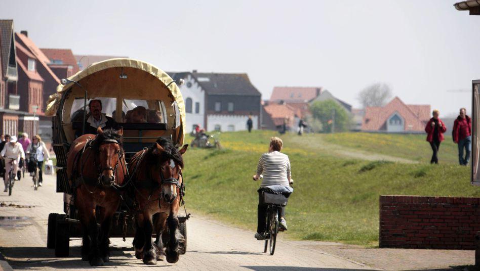 Pferdekutsche auf der Nordseeinsel Juist: Auch für ein PS kann der ermäßigte Mehrwertsteuersatz für Taxis gelten
