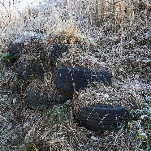 Gib Gummi: Im Earthship-Projekt bekommen alte Reifen eine neue Verwendung.