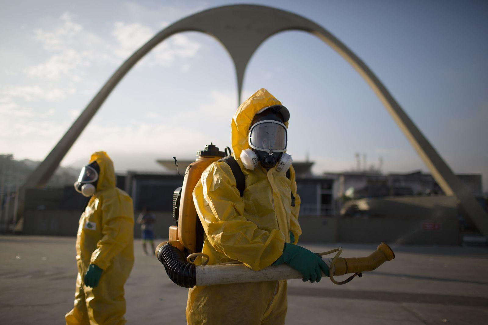 Zika-Virus/ Brasilien/ Karneval