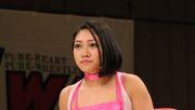 Japan will nach Tod einer Wrestlerin gegen Cybermobbing vorgehen