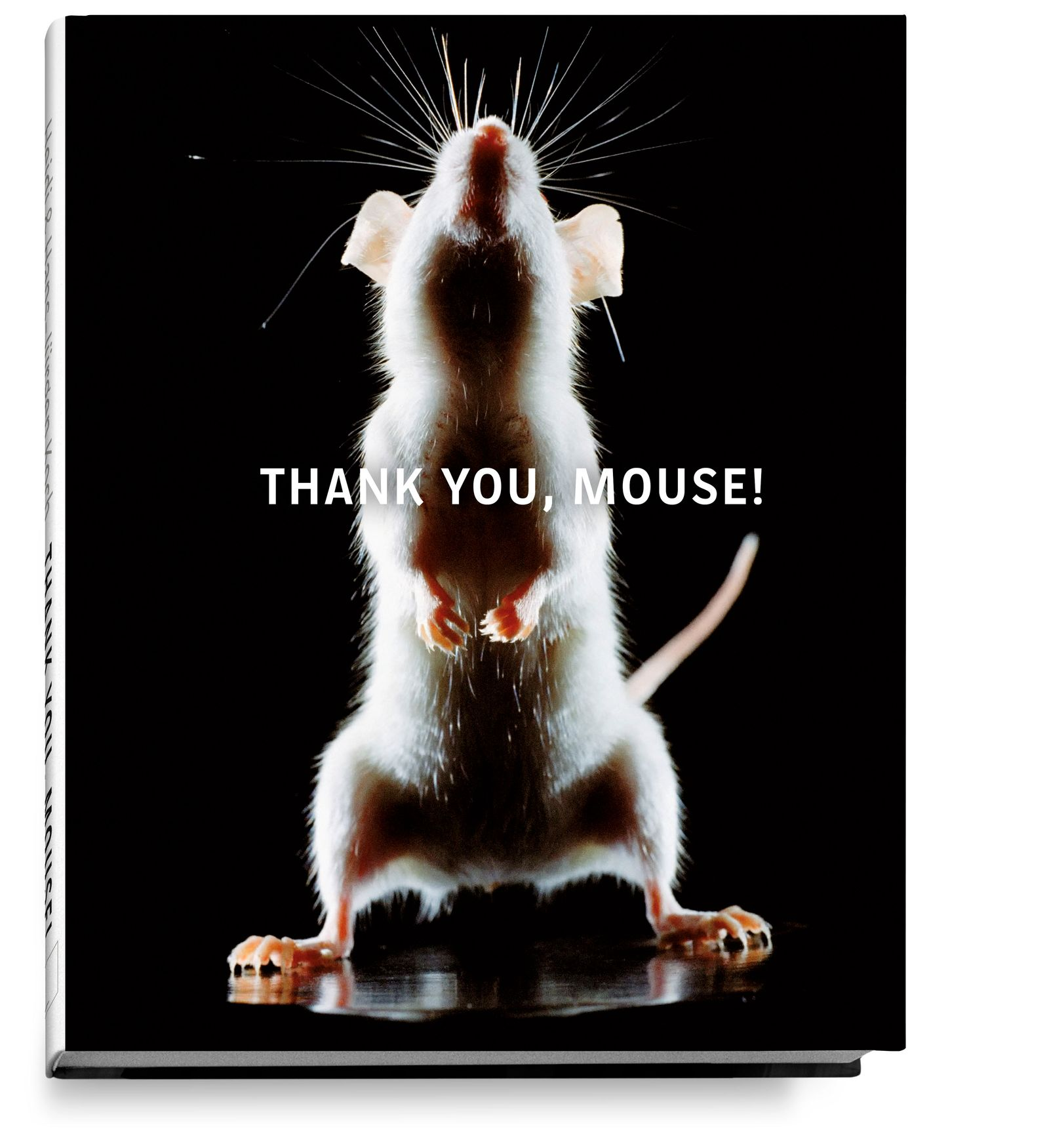 thank_you_mouse