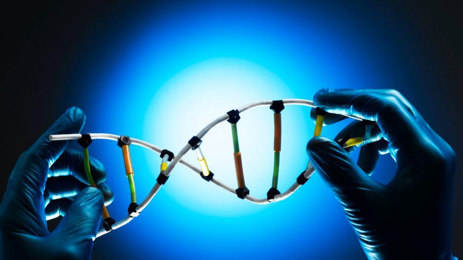 DNA-Modell: Ein funktionierendes Gen wird in die Zellen eingeschleust