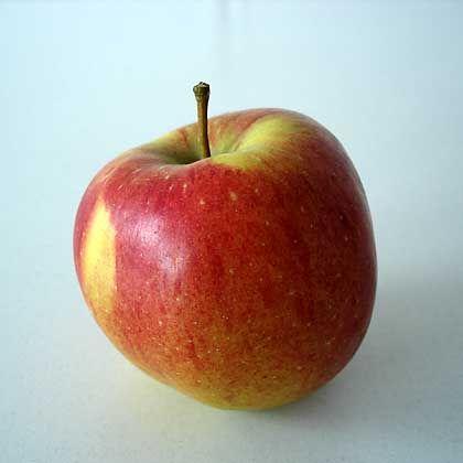 """Tafelapfel: """"Keinen Grund, Äpfel globaler Herkunft anzuprangern"""""""