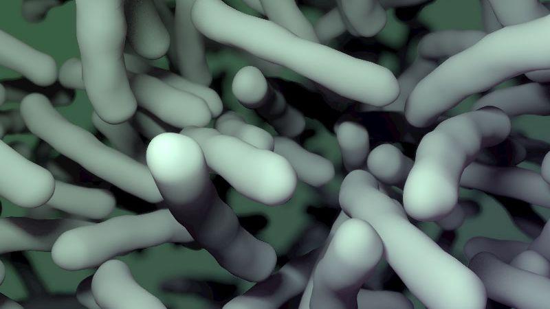 Bakterien (künstlerische Darstellung): Antibiotikaresistenzen sind ein globales Problem