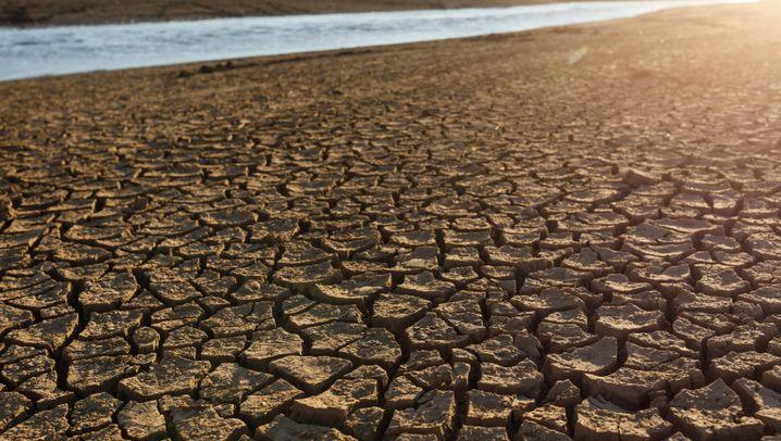 Naturkatastrophen: Verwüstet