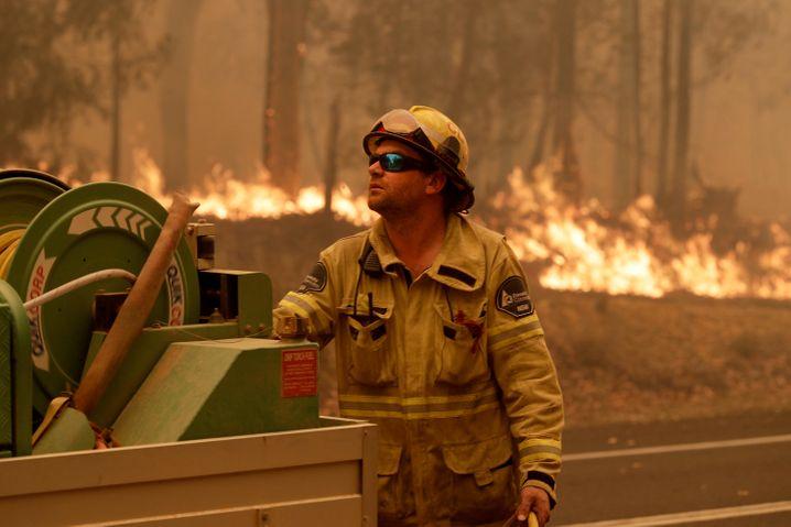 Verheerende Brandsaison: Mehr als die Hälfte der Australier war einer Umfrage zufolge direkt von den Feuern betroffen