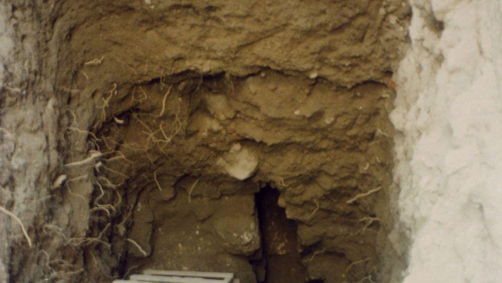 Blinder Passagier: Wie Fischbandwürmer in eine Latrine in Jerusalem kamen