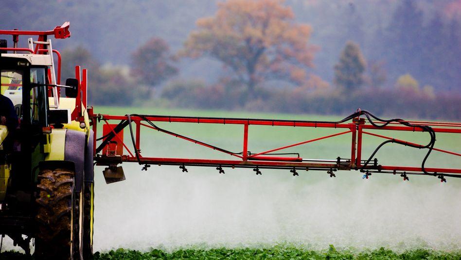 Einsatz von Pflanzenschutzmitteln: Regengüsse spülen giftige Stoffe von Feldern in anliegende Gewässer