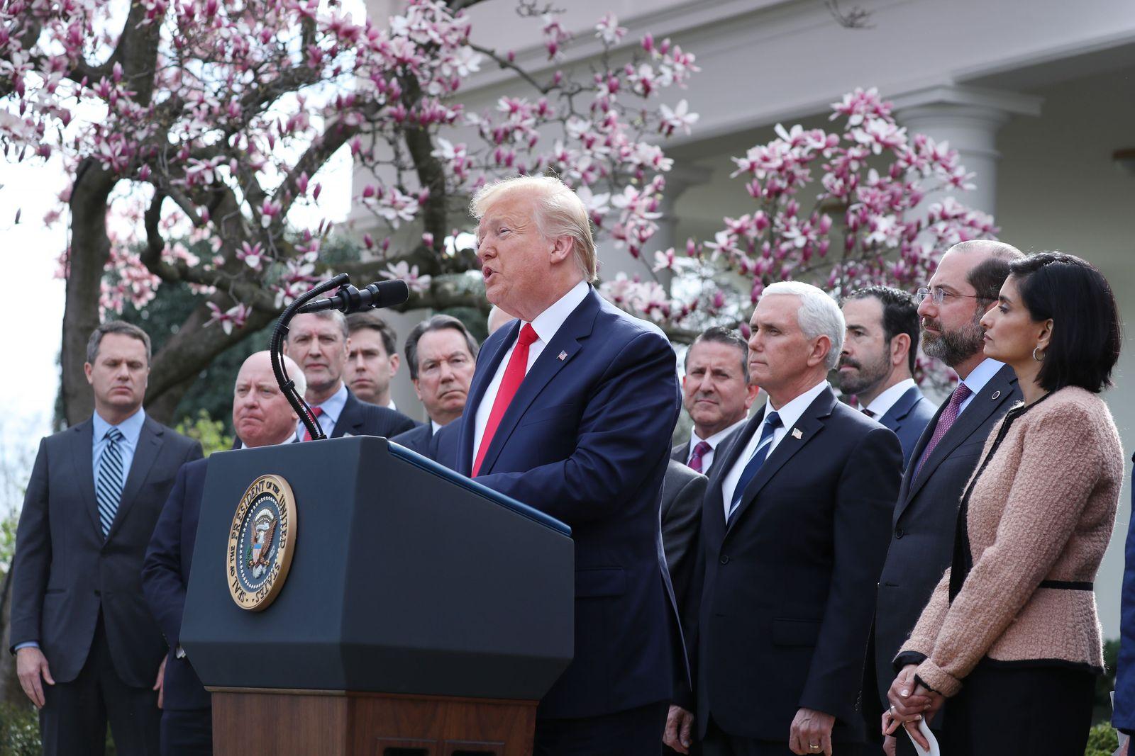 US President Donald J. Trump declares a national emergency due to the COVID-19 coronavirus pandemic, Washington, USA - 13 Mar 2020