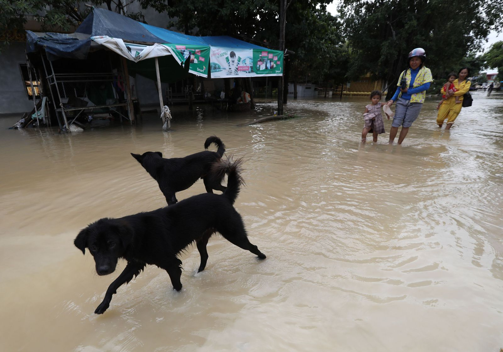 At least 11 killed, tens of thousands affected by floods in Cambodia, Phnom Penh - 14 Oct 2020