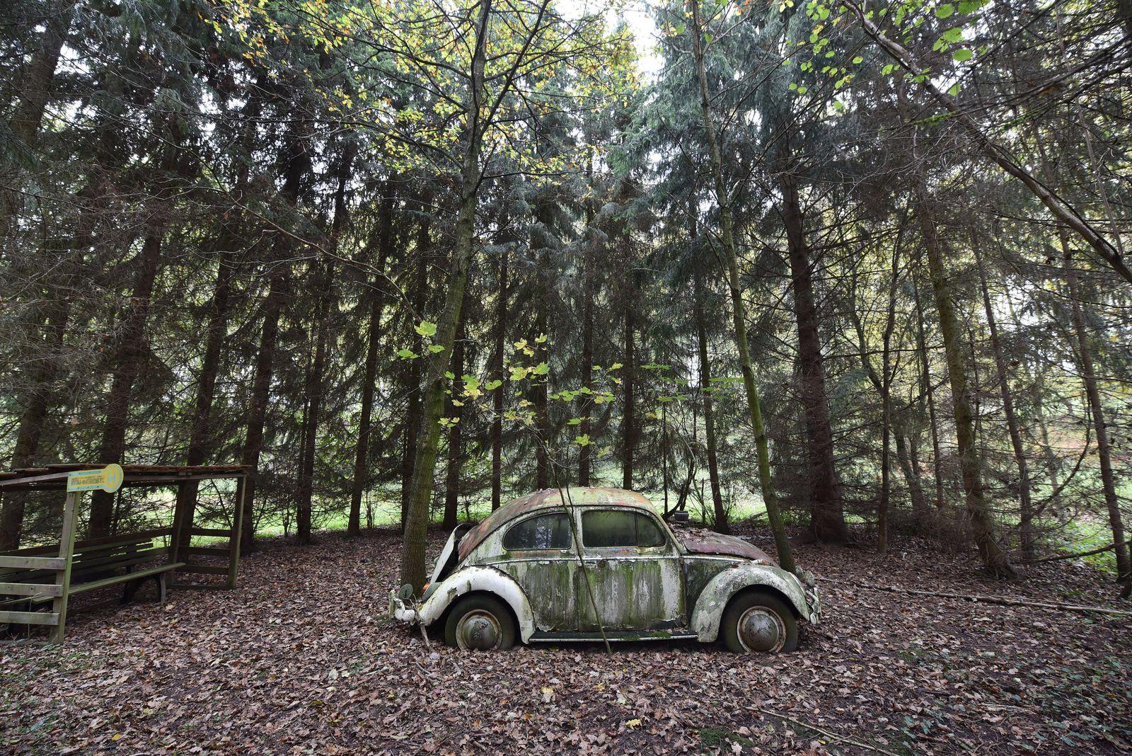 Käfer VW