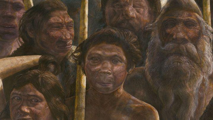 Älteste Neandertaler-DNA: 430.000 Jahre alt
