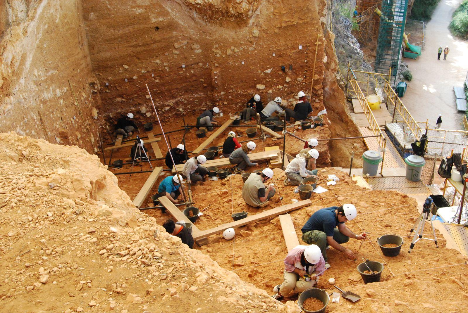 Homo antecessor discovered in 1994