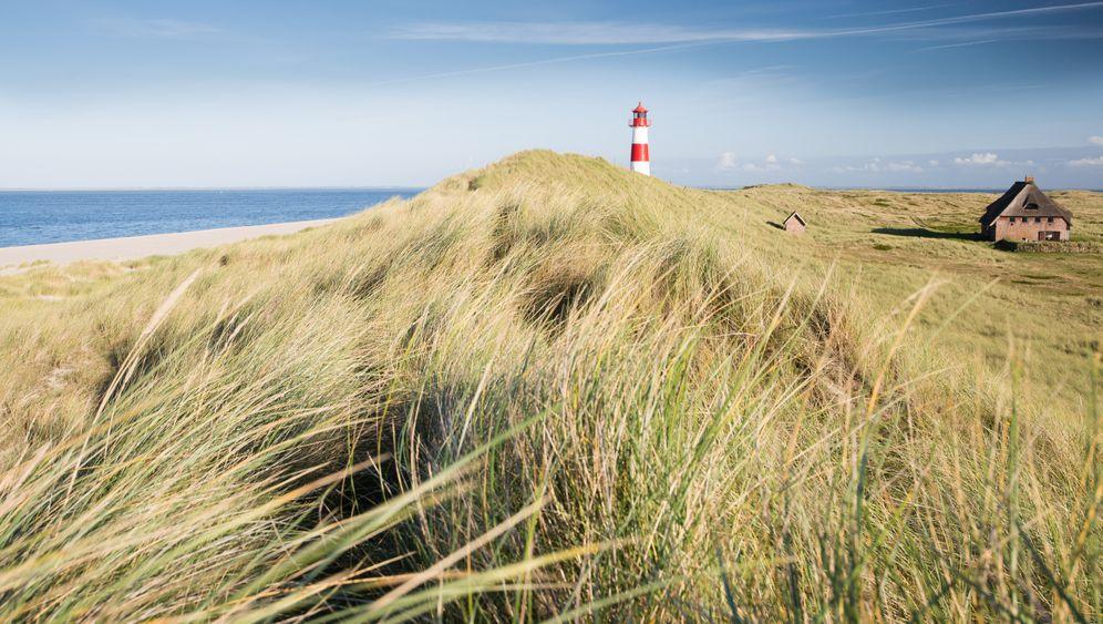Inselwandern in Deutschland: Sand im Schuh, Wal vor der Linse