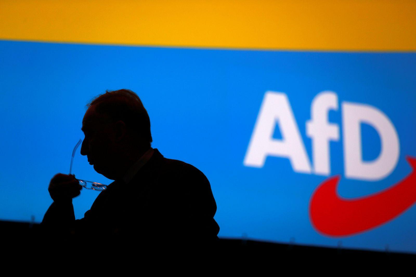 GERMANY-POLITICS/AFD