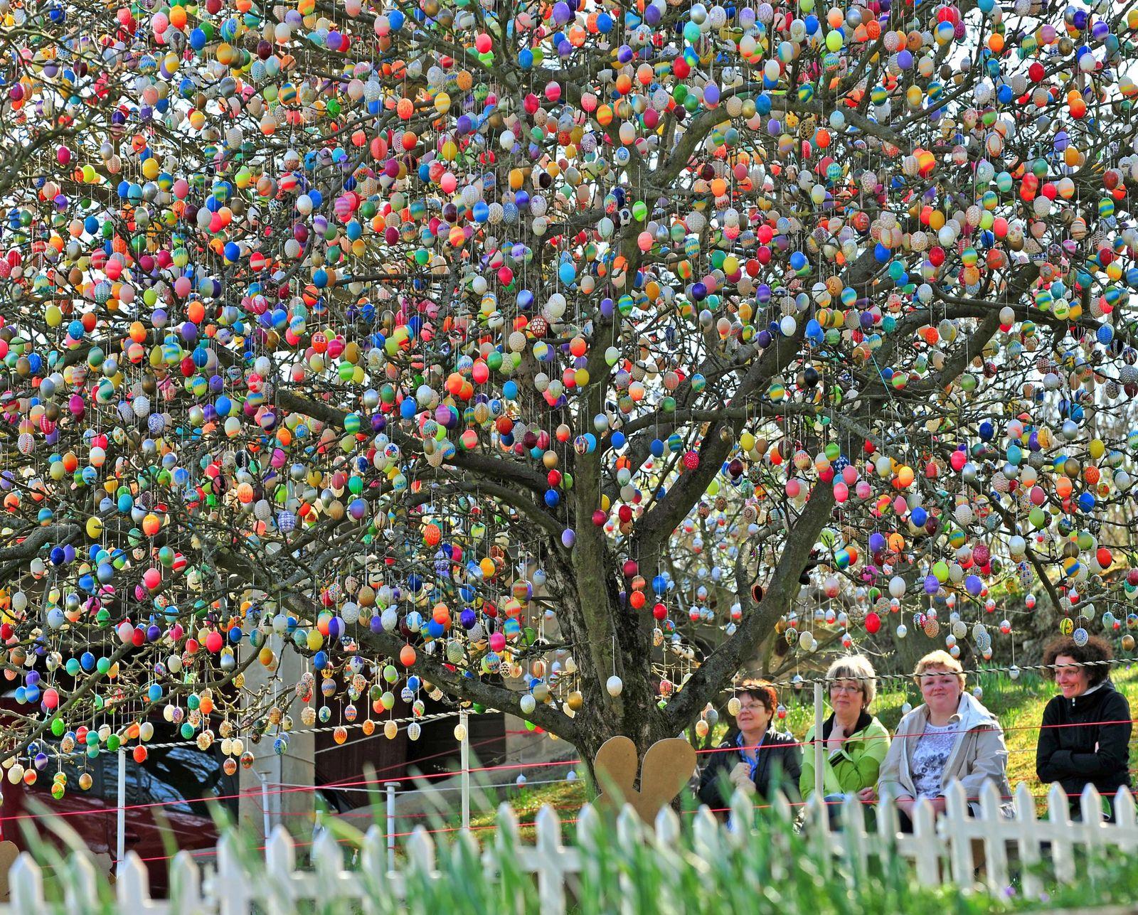 10.000 bunte Eier am Ostereierbaum